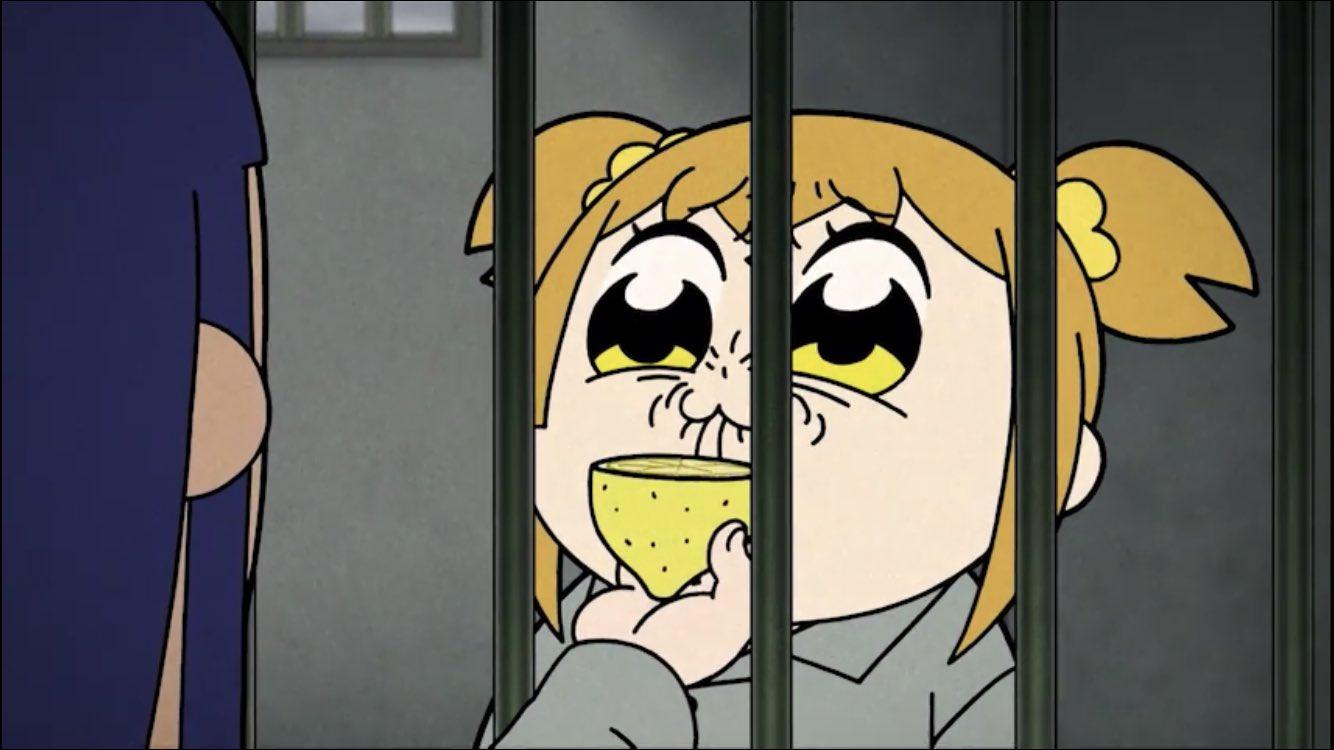 『ポプテピピック』8話 感想 レモン盃に大爆笑!